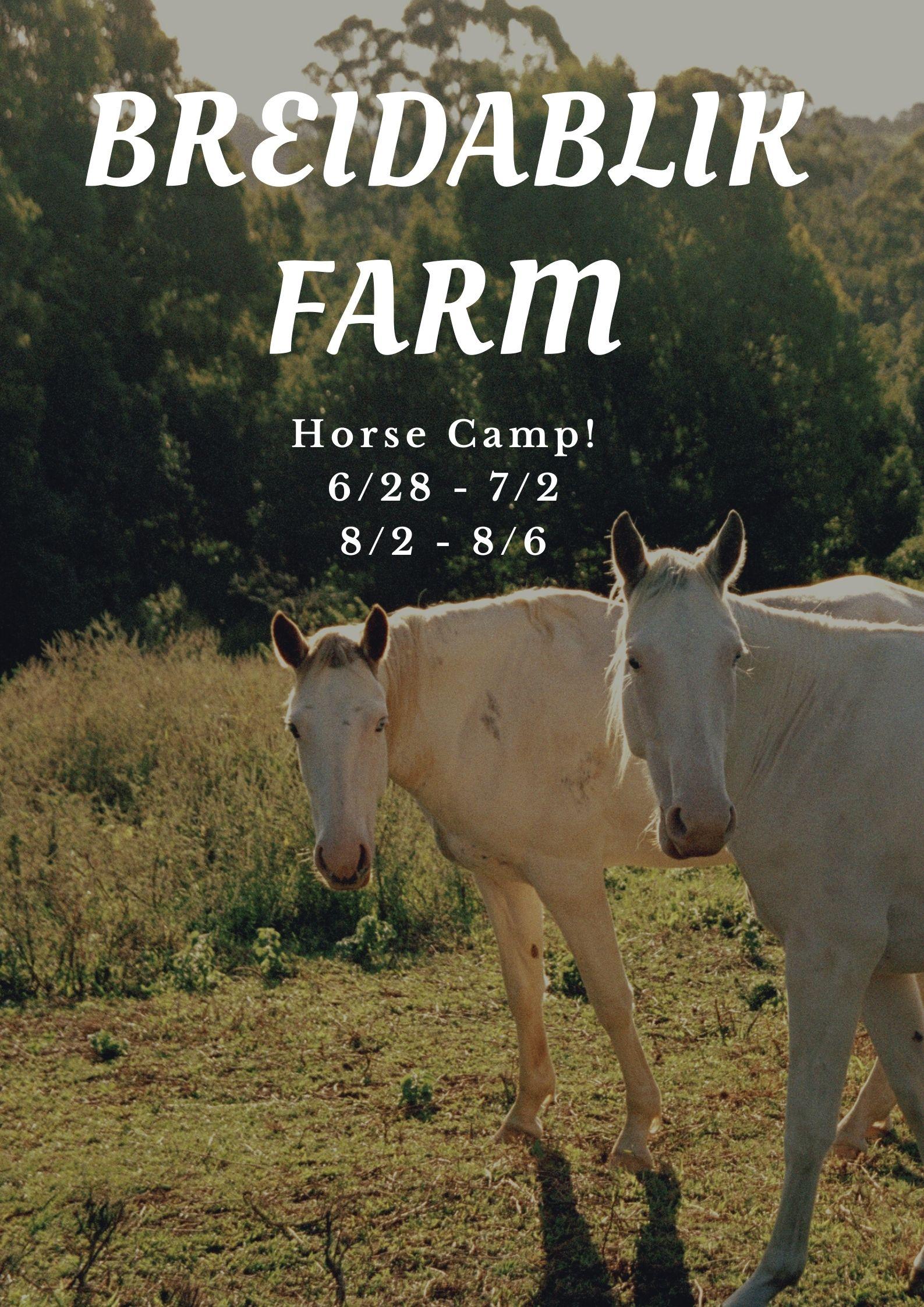 Breidablik Farm Camp 2021