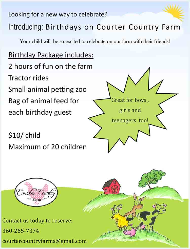 Courter Country Farm Birthday Party Flyer