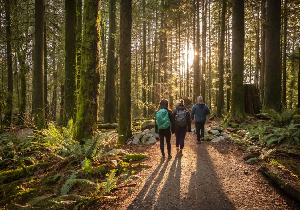 visit over 200 parks trails and places in Kitsap County