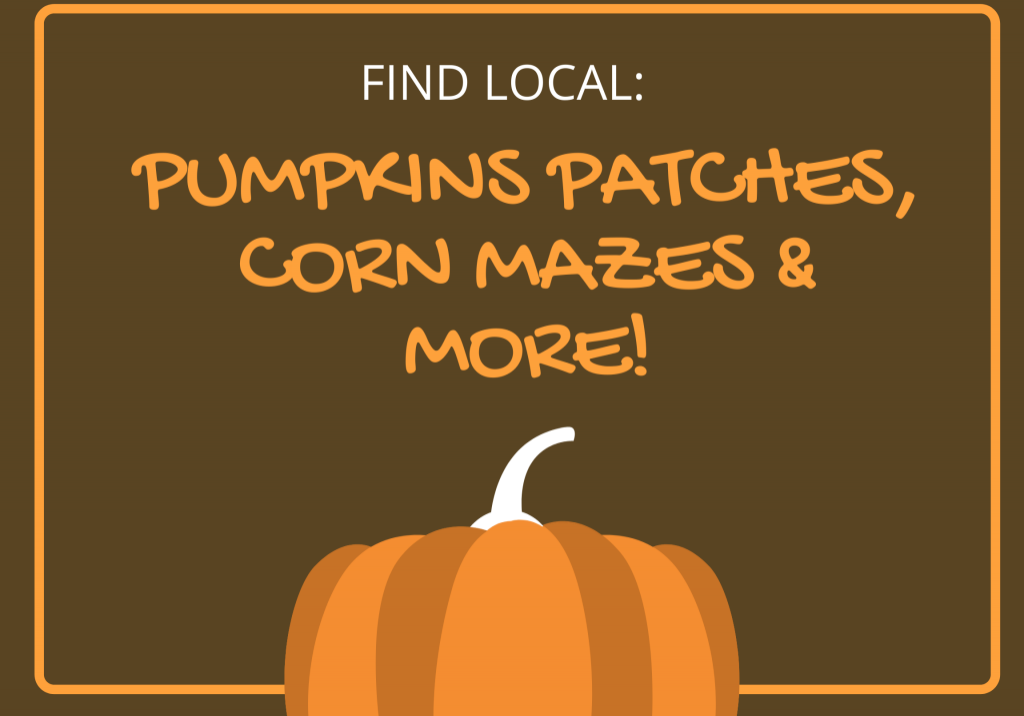 find pumpkin patches and corn mazes in Kitsap County