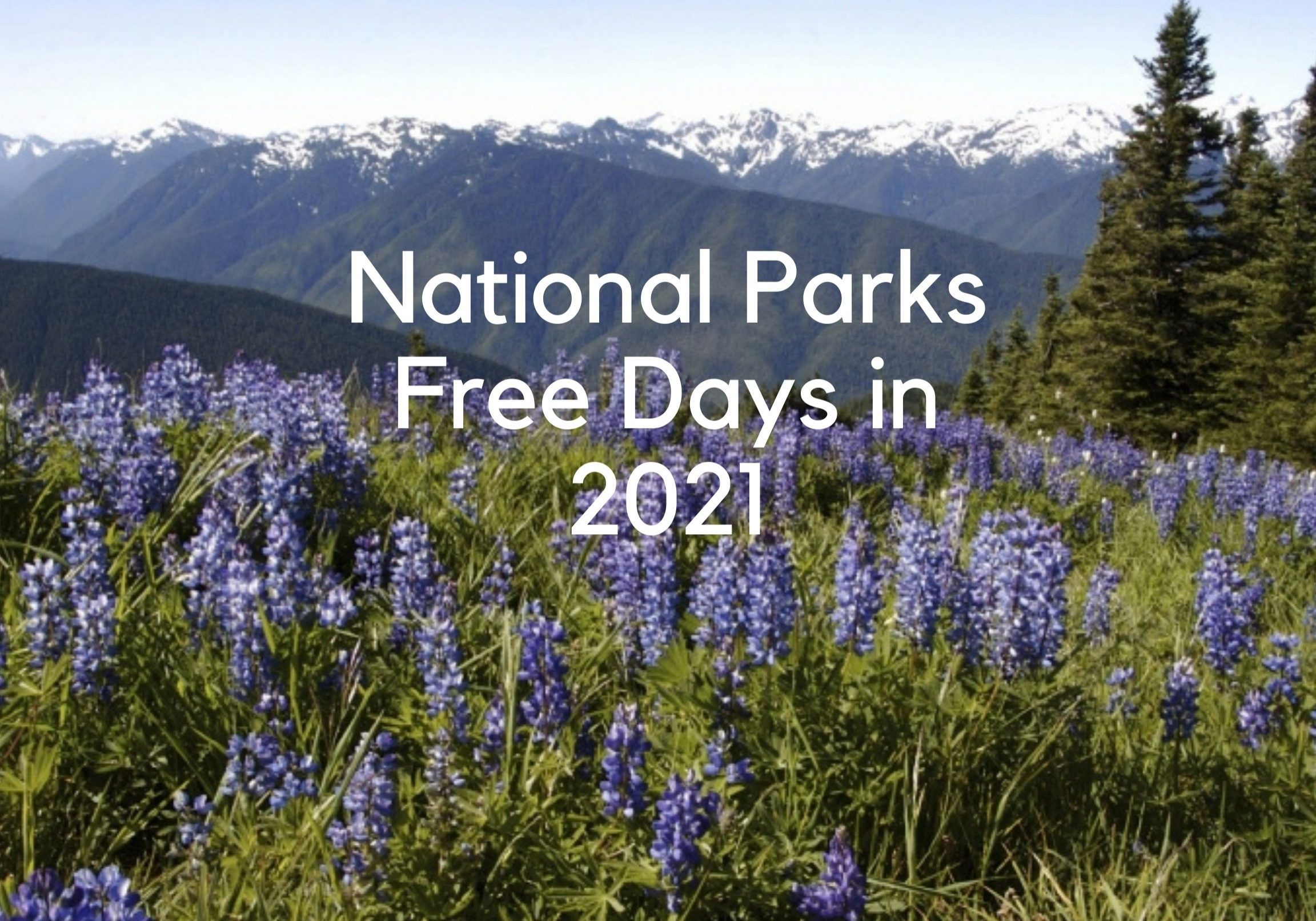 Fee-Free days to visit our national parks in 2021